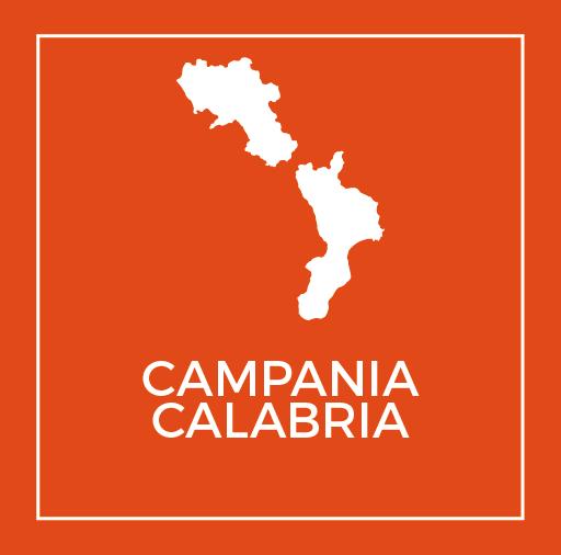 Volantino Todis Campania Calabria