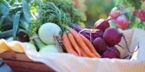 5 buoni motivi per scegliere prodotti bio - Todis Supermercati