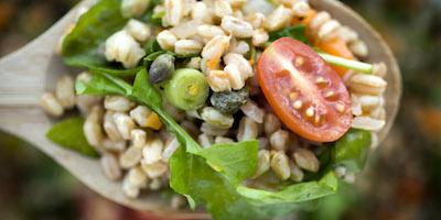Farro, il cereale dai mille benefici e proprietà